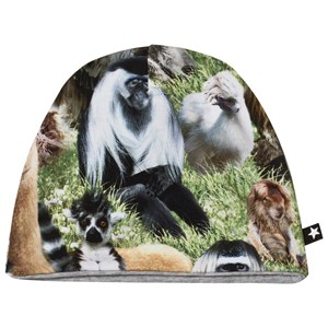 Molo Ned Baby Hat Hairy Animals 0-3 mdr