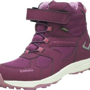 Treksta Arrow GTX Vinterstøvler, Purple 25
