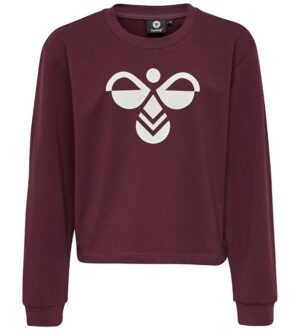 Hummel Sweatshirt - Cinco - Bordaeux m. Logo