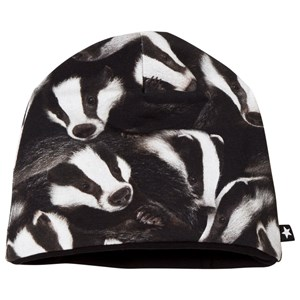 Molo Ned Baby Hat Badgers 3-6 mdr