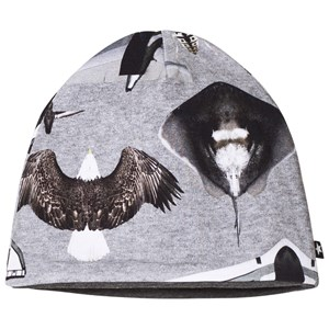 Molo Ned Baby Hat Planes and Birds 3-6 mdr