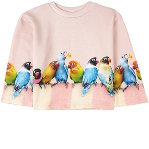 Molo Mikko Sweatshirt Love Birds Big 3 år